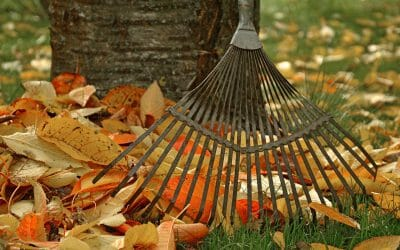 The Household Jobs You Need to Tackle This Autumn